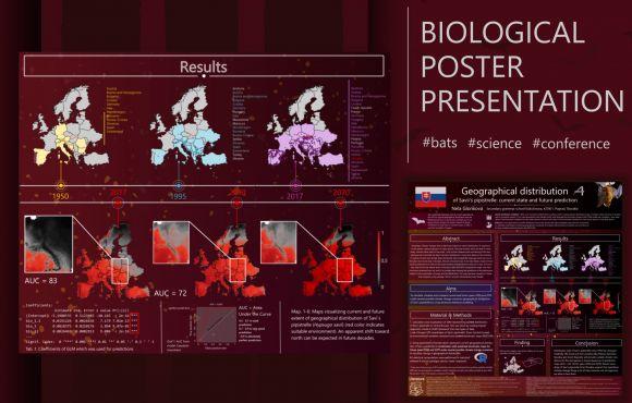 Vedecký poster na medzinárodnú súťaž